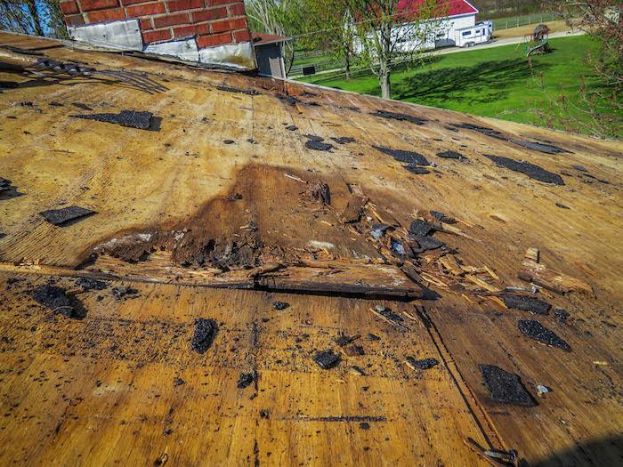 damaged roof sheeting